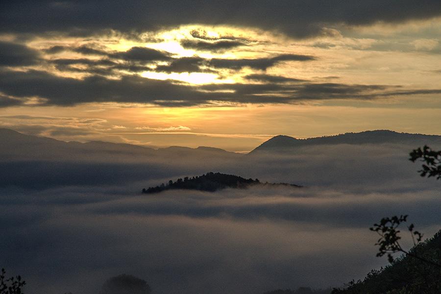 Nieblas al amanecer