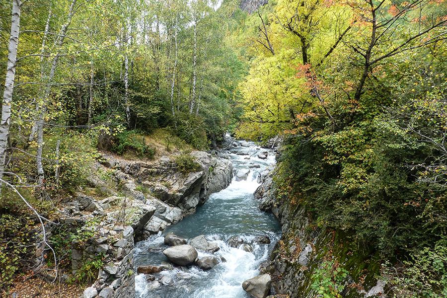 Río Barrosa en otoño