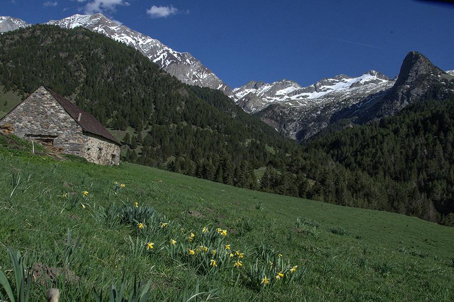 Valle de Chistau